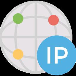 IP Addresses